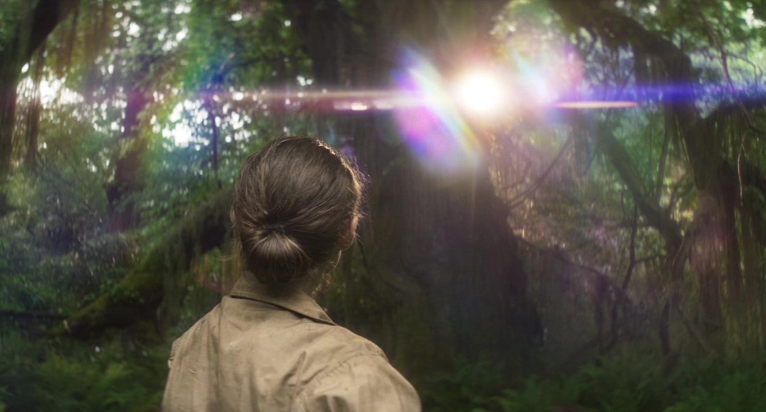 Annihilation_2018_Screenshot_0911